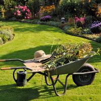 Garden Clearance Stoke Newington