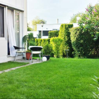 Garden Maintenance Stoke Newington