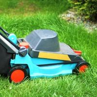 Lawn Mowing Stoke Newington